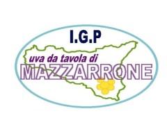 logo I.G.P